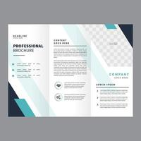 Professional Brochure Vector Template