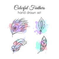 Set di piume vettoriale. Elementi etnici disegnati a mano. Piuma abbozzata vettore