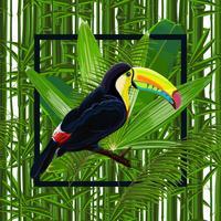 Vector il modello senza cuciture con le foglie tropicali e il tucano dell'uccello
