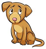Un cane domato vettore