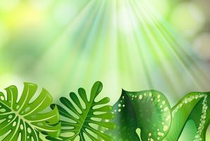Sfondo verde della natura vettore