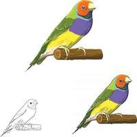 arte vettoriale uccello