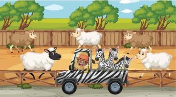 scene di safari con molte pecore e personaggi dei cartoni animati per bambini vettore