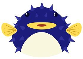 Pesce palla blu su sfondo bianco vettore