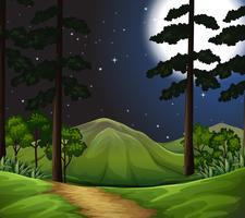 boschi di scena notturna vettore
