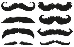 Diversi tipi di baffi vettore
