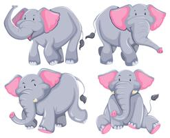 Elefanti vettore
