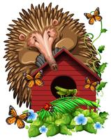 Hedghog sopra la casetta per gli uccelli vettore