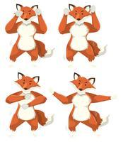Set di mosse di danza volpe vettore