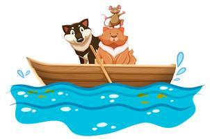 Gatto e cane nella barca a remi