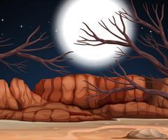 Scena del deserto di notte