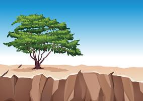 Albero sulla montagna di pietra
