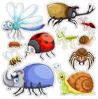 Set di adesivi di molti insetti