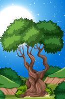 Un albero sullo sfondo della natura