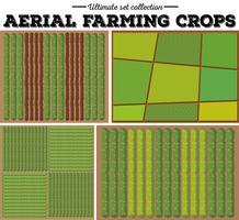 Modello di colture agricole aeree vettore