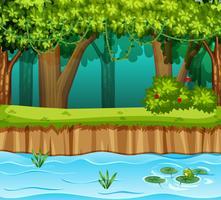 foresta con scena del fiume vettore