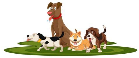 Una serie di cani vettore