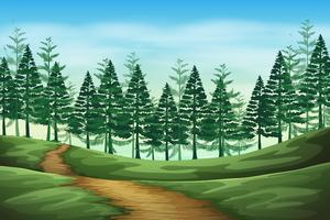 Scena di sfondo paesaggio foresta vettore