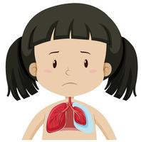 Giovane ragazza con polmoni vettore