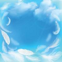 piume bianche sull'illustrazione vettoriale del cielo blu blue