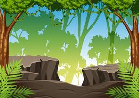 Uno sfondo di giungla verde vettore