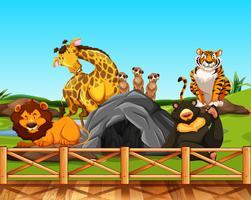 Vari animali in uno zoo