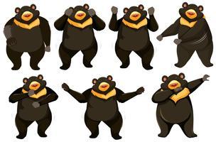 Set di posizione di danza dell'orso vettore