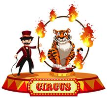 Una manifestazione del circo della tigre su fondo bianco