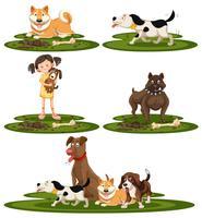 Una serie di cani di razza