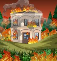 Il fuoco distrugge il fondo della villa vettore