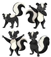 Un set di skunk vettore