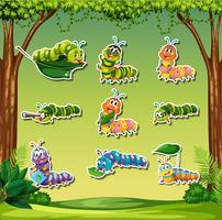 Set di adesivo caterpillar su priorità bassa della foresta vettore