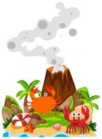 Granchi e vulcano sull'isola vettore