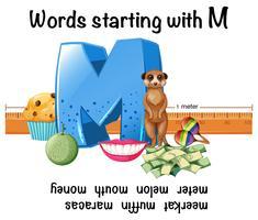 Parole in inglese che cominciano con M vettore