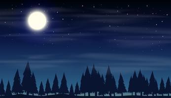 Scena notturna con boschi di silhouette vettore