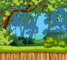 Un bellissimo paesaggio nella giungla vettore