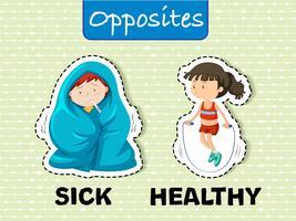 Parole opposte malate e sane vettore