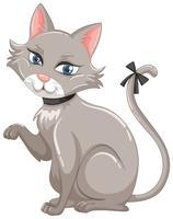 Gatto grigio con nastro nero sulla coda