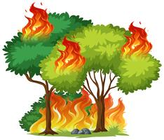 Albero isolato in fiamme vettore