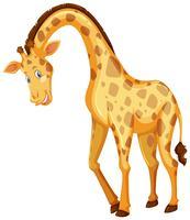 Carino giraffa con un sorriso felice vettore