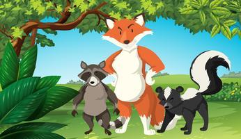 Animali selvaggi nella foresta