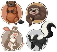 Set di animali esotici sul modello del cerchio vettore