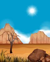 Scena del deserto con canyon e campo vettore