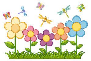 Farfalle e libellule in giardino fiorito vettore