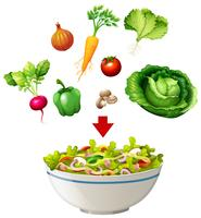 Varietà di insalata in una ciotola
