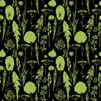 Modello senza cuciture botanico astratto. Sfondo a base di erbe vettoriale.