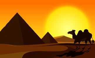 Piramide e cammello con scena del deserto