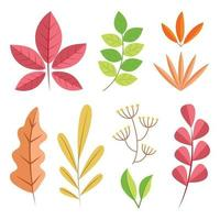 set di icone di foglie di autunno vettore