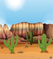 Scena con canyon e cactus nel deserto vettore