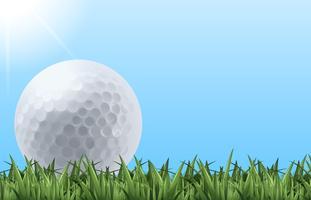 Pallina da golf sull'erba vettore